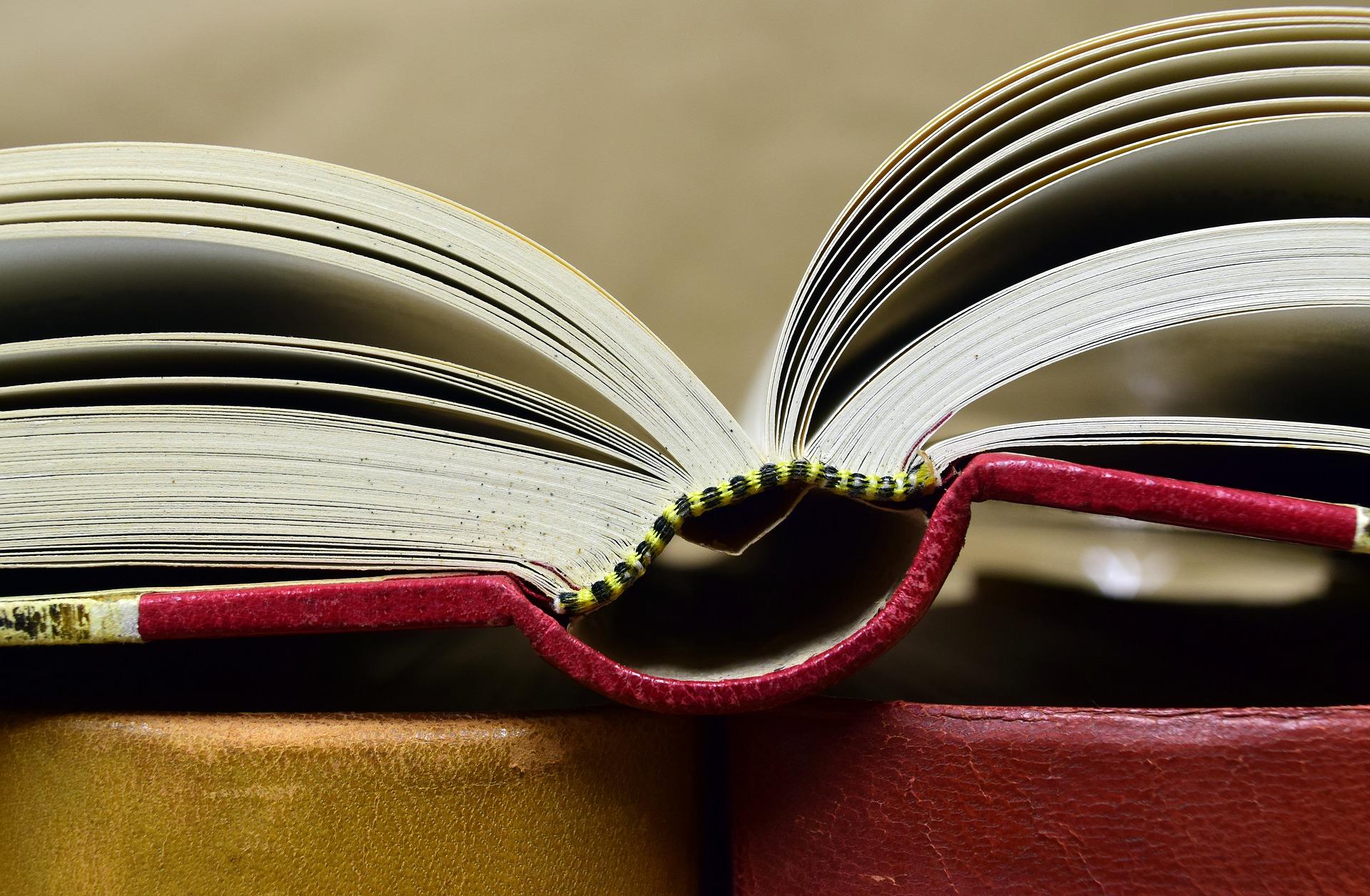 開いている状態の本を横から撮影した様子